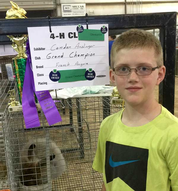 Camden with his Grand Champion French Angora, bred at our FurFoxy Rabbitry!
