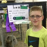 "Camden & Grand Champion French Angora, ""Fiona"", bred at FurFoxy!"