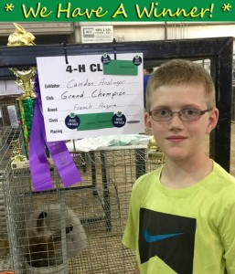 Grand_Champion_4H_Rabbit_Show_Indiana_wHeadline