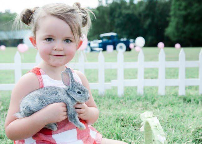 Bunny Birthdays Louisville Region