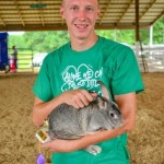 American Chinchilla Champion